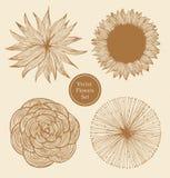 Винтажные установленные цветки Стоковые Фотографии RF