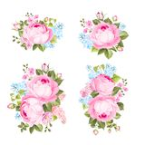 Винтажные цветки установили предпосылку overwhite Стоковые Изображения