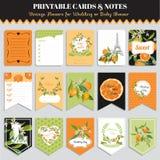 Винтажный апельсин цветет комплект карточки День рождения, свадьба, детский душ Стоковые Изображения RF