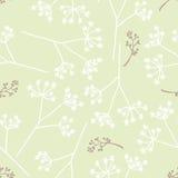 Винтажный безшовный цветочный узор Стоковые Фото