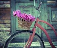 Винтажный велосипед с корзиной с цветками пиона Стоковое фото RF