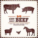 Винтажный гид диаграммы для резать мясо стоковые изображения