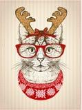 Винтажный графический плакат с котом битника при красные стекла, одетые в шляпе и красном цвете рожков оленей связал свитер Стоковое Изображение