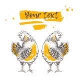 Дизайн с курицей