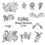 Винтажный комплект графика флористических элементов флористические формы на белой предпосылке также вектор иллюстрации притяжки c Стоковые Фотографии RF