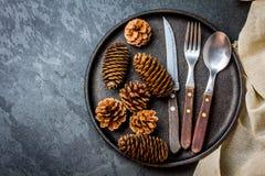 Винтажный комплект столового прибора, украшение рождества на железной плите, предпосылке шифера Стоковое Изображение