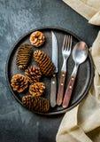 Винтажный комплект столового прибора, украшение рождества на железной плите, предпосылке шифера Стоковые Фото