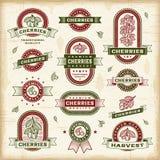 Винтажный комплект ярлыков вишни Стоковые Фото