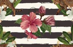 Винтажный красивый и ультрамодный безшовный тропический дизайн картины в супер высоком разрешении r r бесплатная иллюстрация