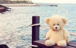 Винтажный медведь забавляется, игрушки ребенк, самостоятельно Стоковые Фотографии RF