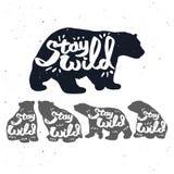Винтажный логотип медведя Стоковое Изображение RF