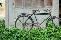 Винтажный парк велосипеда на старой стене Стоковое Изображение RF