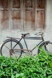 Винтажный парк велосипеда на старой стене Стоковые Фото