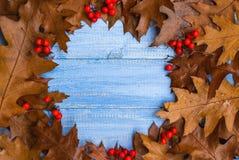 Винтажный плодоовощ осени состава аранжировал backgrou круга деревянное стоковая фотография rf