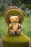 Винтажный плюшевый медвежонок с бабочкой Стоковые Изображения