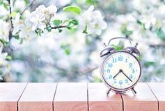 Винтажный ретро будильник в весеннем времени стоковое фото rf