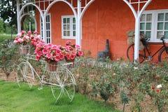 Винтажный сад Стоковые Изображения
