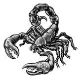 Винтажный скорпион стиля woodblock иллюстрация штока