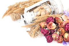 Винтажный состав высушенных цветков Стоковая Фотография RF