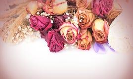 Винтажный состав высушенных цветков Стоковые Изображения