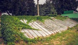 Винтажный старый перерастанный парник в дворе Стоковое Изображение RF