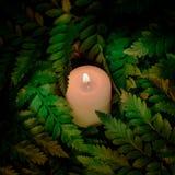 Винтажный стиль изображения на меньшей белой свече лежит на зеленых листьях Стоковая Фотография RF