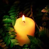 Винтажный стиль изображения на меньшей белой свече лежит на зеленых листьях Стоковая Фотография