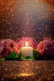 Винтажный стиль изображения на розовой складчатости лилии воды или цветка лотоса Стоковые Изображения