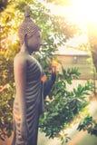 Винтажный стиль изображения, стоящая статуя Будды сада виска Стоковая Фотография RF
