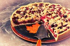 Винтажный торт сливы Стоковые Изображения RF