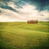 Винтажный тосканский ландшафт Стоковое фото RF