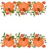 Винтажный фестиваль карточки иллюстрации вектора сбора осени оформления тыквы Стоковая Фотография