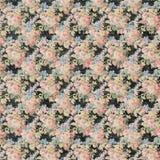 Винтажный флористический стиль черной и розовой предпосылки повторения роз затрапезный шикарный иллюстрация штока