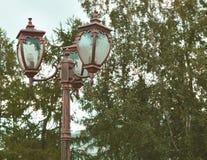 Винтажный фонарик на предпосылке деревьев и неба в парке стоковые фотографии rf