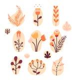 Винтажный флористический комплект Стоковые Изображения