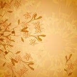 Винтажный флористический орнамент Стоковое Изображение