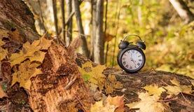 Винтажный черный будильник на листьях осени Фото конспекта изменения времени стоковые изображения
