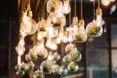 Винтажный шарик lidht Edison, крупный план Стоковое Фото