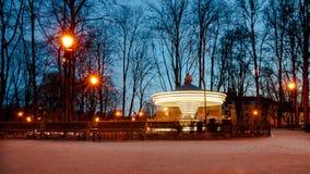 Винтажный carousel в парке стоковые изображения rf