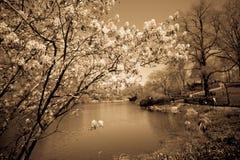 Винтажный Central Park NYC Стоковое Изображение RF