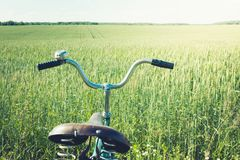 Винтажный handlebar с колоколом на велосипеде Летний день для отключения Взгляд пшеничного поля напольно closeup Стоковая Фотография