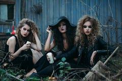 3 винтажных ведьмы собранной для Sabbat Стоковая Фотография RF