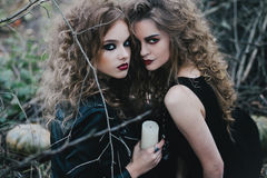 2 винтажных ведьмы собрали канун хеллоуина Стоковые Изображения RF