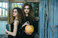 2 винтажных женщины как ведьмы Стоковое Фото