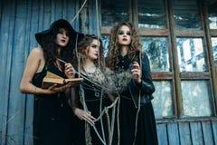 3 винтажных женщины как ведьмы Стоковое Фото