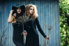 2 винтажных женщины как ведьмы Стоковые Изображения RF