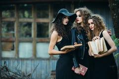 3 винтажных женщины как ведьмы Стоковое фото RF