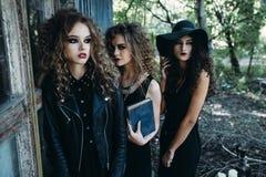 3 винтажных женщины как ведьмы Стоковая Фотография RF