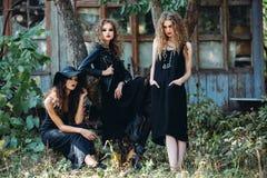 3 винтажных женщины как ведьмы Стоковое Изображение