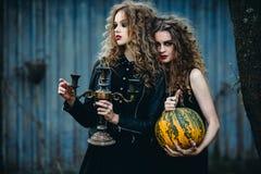 2 винтажных женщины как ведьмы Стоковые Изображения